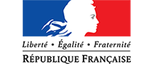 gouvernement_francais (Personnalisé)