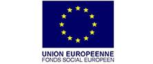 logo-fse-300x256 (Personnalisé)